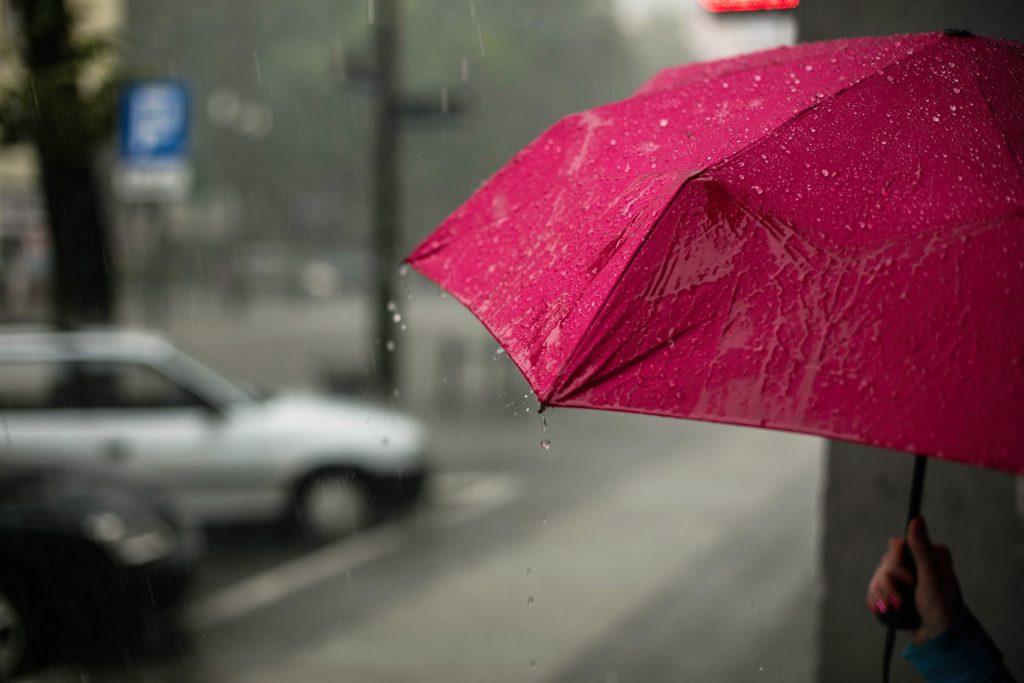 Roze paraplu in de regen
